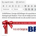 WordPress_blog_mini120